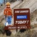 Image for Smoky Bear Sign at California/Nevada Border