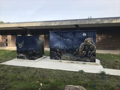 Pair of Utility Boxes, Saratoga, California