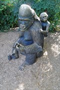 Image for Gorilla  -  Escondido, CA
