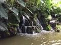 Image for Jungle Cruise Entrance Falls - Lake Buena Vista, FL