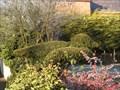 Image for Bird Topiary - Cogenhoe, Northampton, UK.