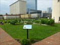 Image for Abescon Lighthouse Community Garden - Atlantic City, NJ