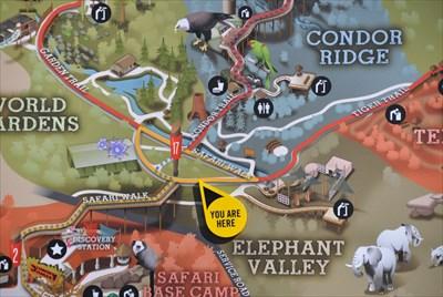 San Diego Zoo Safari Park Safari Walk You Are Here Maps On - San diego zoo map
