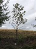 Image for Charles Descheemaeker - Joliet, Montana