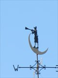 Image for Trumpeter Weathervane - San Jose, CA