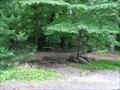 Image for Dinosaur Discovery Park - Haddonfield, NJ