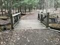 Image for Hemlock Crossing Footbridge #9 - West Olive, Michigan