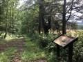 Image for Plain Path... Shenandoah Hunting Path... Carolina Road... Rogue's Road... - Aldie, Virginia