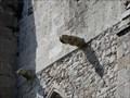 Image for Gargouilles  Collegiale Notre Dame de Grande Puissance - Lamballe, France