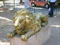 Image for Lion Statues at the Oakland Zoo