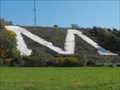 Image for LARGEST Letter M in the World - Platteville, WI