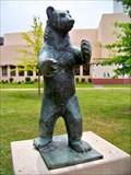 Image for Berlin Bear - Dallas TX