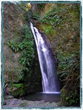 Image for Te Ana Falls. Hawkes Bay. North Is. New Zealand.