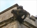 Image for Gargoyle - St Mary's Church, Shelton, Bedfordshire, UK