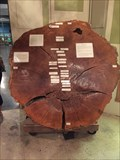 Image for 1741 Burr Oak - Heard Muesum - McKinney, TX, US