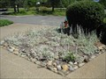 Image for Xeriscape Demonstration Garden - Placerville, CA