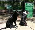 Image for GEMINI SPRINGS DOG PARK