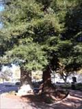 Image for California  -  120 Years  -  Monterey, CA