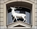 Image for U bileho jelinka / At the White Deer, Praha, CZ