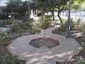 Image for Memorial Rose Garden At Heritage Square - Phoenix AZ