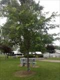 Image for Everett & Virginia Ricker - Wauseon, OH
