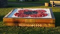 Image for WWI Centenary memorial - Attleborough, Norfolk
