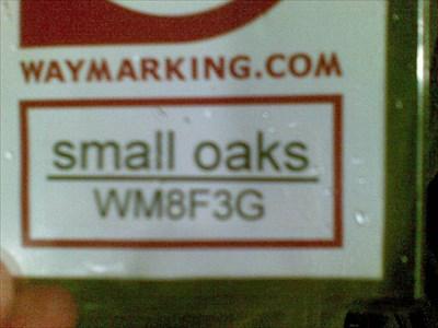Small oaks