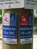 Image for UTM 32 U 0373339 / 5604793 - Apollinaris-Schleife - Remagen, RP, Germany