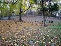 Image for Arney's Mount Burial Ground - Columbus, NJ