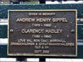 Image for Andrew Sippel +, bench - Tamworth, NSW, Australia