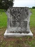 Image for Eri M. Posey - Boxelder Cemetery - Boxelder, TX