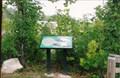 Image for Klondike Quarry - Klondike Park - St, Charles, MO