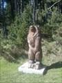 Image for L'ours de l'ermitage - Font-Romeu - France