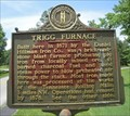Image for Trigg Furnace/Iron Made in Kentucky
