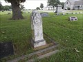 Image for Williamson F. Betts - Fairview Cemetery - Gainesville, TX