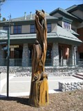 Image for Raccoon Totem Pole - South Lake Tahoe, CA