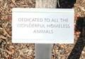 Image for Homeless Animals - Walnut Creek, CA