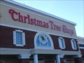 Image for Christmas Tree Shops - Johnson City - NY