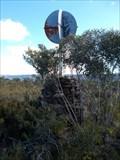 Image for Yarrawa - Budderoo National Park, Barrengarry, NSW
