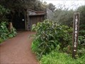Image for Reserva de la Biosfera La Gomera - Canary Islands, Spain