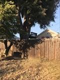 Image for Sonoma Place Treehouse - Santa Clara, CA