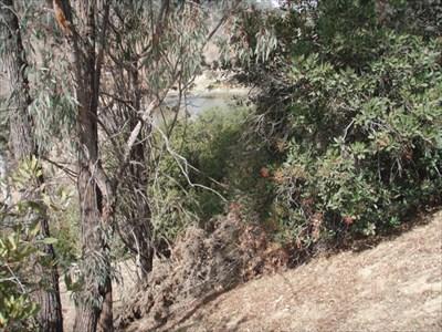 Lower Arroyo Seco Nature Park