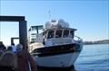 Image for Orca Spirit Adventures - Victoria BC Canada