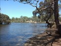 Image for Confluence - Helena River - Swan River , Bassendean , Western Australia