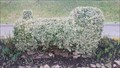 Image for Train Topiary - Rothley station GCR (Great Central Railway) - Leicestershire