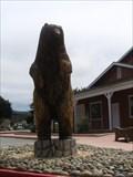 Image for Bear - Half Moon Bay, CA