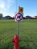 Image for Don't pee on that Hydrant, Dog!