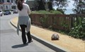 Image for Capitola Turtle Crossing - Capitola, CA
