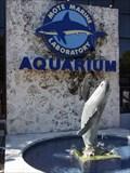 Image for Mote Aquarium