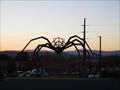 Image for Spider - Santa Fe, NM